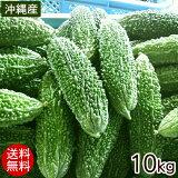 沖縄産 ゴーヤー 約10kg(40〜50本)【送料無料】