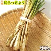 沖縄産島らっきょう(生)200g│沖縄野菜│