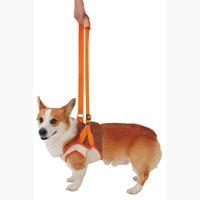 ペティオ老犬介護用歩行補助ハーネス(前足用)L