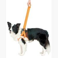 ペティオ老犬介護用歩行補助ハーネス(前足用)2L