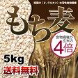【送料無料】もち麦 5kg もちむぎ ごはん 大麦 押麦 押し麦 米 穀物 食物繊維 送料無料 もち麦ごはん 02P03Sep16