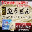 日南 魚うどん ダシ付き うどん150g ダシ60ccセット 宮崎県 国産 うどん 麺 たけしの健康エンターテインメントで話題に みんなの家庭の医学