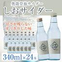 奥能登地サイダー しおサイダー 340ml×24本 地サイダ...