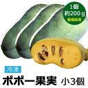 冷凍 ポポー 幻の果実 小(200g前後) 3個 国産 果物 愛媛県 ぽぽー ポーポー アケビガキ カスタードアップル 名医のTHE太鼓判 【マンゴー バナナの味に似ていると言われています】
