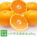 【送料無料】高知県産 山北 ハウスみかんS〜Mサイズ約5kg...