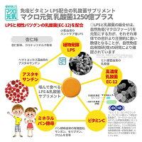 子育て・子供用サプリ免疫ビタミンLPSサプリメント「マクロ元気乳酸菌1250億プラス」(30粒)リポポリサッカライド(LPS)+高濃度乳酸菌(EC-12)+アスタキサンチン配合(マクロ元気シリーズ)