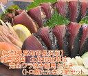 送料無料!龍馬の国 土佐伝統製法完全ワラ焼き龍馬たたき(トロ鰹たたき)2節セット