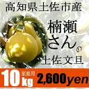 高知県土佐市産【家庭用】楠瀬さんの土佐文旦 10kg