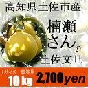 高知県土佐市産【贈答用】楠瀬さんの土佐文旦 L/10kg