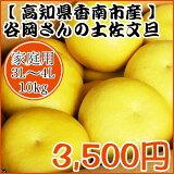 【家庭用】谷岡さんの土佐文旦 3L〜4L/10kg