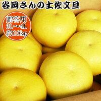 【贈答用】谷岡さんの土佐文旦3L〜4L/10kg