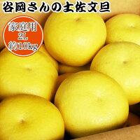 【家庭用】谷岡さんの土佐文旦2L/10kg