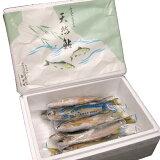 天然あゆ(友釣り・冷凍) 1kg