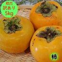 〈訳あり〉【送料無料】【九州産】箱売り 柿(かき カキ)1箱5kg満杯