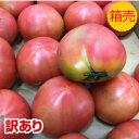 訳あり品【送料無料】【九州産】箱売り トマト(とまと) 1箱 (目安4kg 満杯詰め)