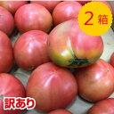 訳あり品【送料無料】【九州産】箱売り トマト(とまと) 2箱 (目安4kg 20〜28玉 満杯詰め)
