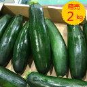 送料無料【九州産】箱売り ズッキーニ 1箱(目安量2kg 1...