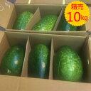 送料無料【九州産】箱売 冬瓜(とうがん トウガン 瓜)1箱(目安10kg 2-5玉程度)