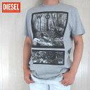 DIESEL ディーゼル メンズ トップス半袖 Tシャツ カットソー クルーネック FURBI/グレー サイズ:S〜3XL
