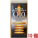 キューテンパワープレミアム エクセレント 240粒入り 10個 Q10パワープレミアム ダイト コエンザイム Q10