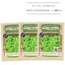 有機種子グリーンフィールドプロジェクト種子