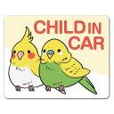 【車ステッカー】インコ 鳥【CHILD IN CAR】チャイルドインカー 車マグネットステッカー ゆうパケット対応205円〜