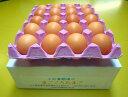 【初めての方限定!】【送料無料】北海道・沖縄別途500円まごころ卵 20個(割れ保証たまご5個含みます) M?Lサイズ