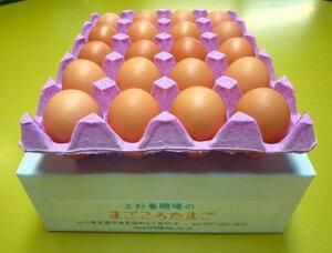 純国産鶏まごころ込めて育てたおいしい卵です。【初めての方限定!】【送料無料】北海道・沖縄別...
