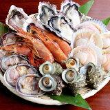 海鮮 バーベキュー 浜焼き セット 家キャン 赤海老 殻付き 牡蠣 帆立 大アサリ サザエ 貝類 2〜3人前 BBQ