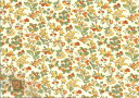 【メール便で送料無料】LIBERTYリバティプリント(限定生地)コットンシフォン生地<NancyAnn>32...