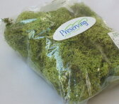 【花材】プリザーブドフラワー 大地農園アイスランドモス小袋 スプリンググリーン