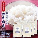 令和元年産 岩手県産ひとめぼれ 無洗米(5kg)