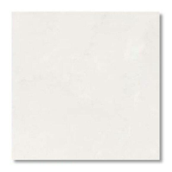 【最安値挑戦中!最大34倍】LIXIL 【IPS-300/WB-21 10枚/ケース】 300mm角平(内床タイプ) スタイルプラス ホワイトバーチ 内床タイプ [♪]