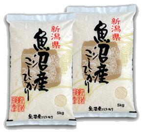 From Niigata minamiuonuma Koshi Hikari 10 kg (5 kg x 2 bags)