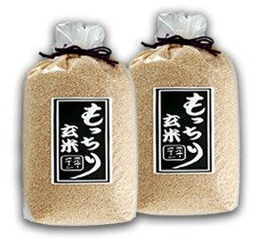もっちり玄米5kg×2【ミルキークイーン】【送料無料】【ギフト】お買い物マラソン1215more10