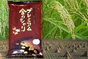 Premium Gold Shari 10 kg (5 kg x 2 bags)