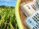 [2015 父の日プレゼント・メッセージカード付]【新潟米と餅セット】新潟米・白餅・草餅・豆餅のセット<送料無料!>