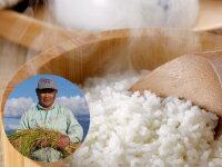米・雑穀, 白米  20kg