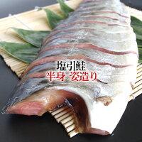 【塩引き鮭半身姿造り】新潟村上の特産品、塩引鮭はお中元などのギフトに最適【楽ギフ_包装】