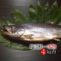 新潟村上伝統の味!【特製塩引き鮭4kg台】最高級の鮭はご贈答にも最適