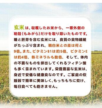 感動の米コシヒカリ玄米1kg(約6合用)