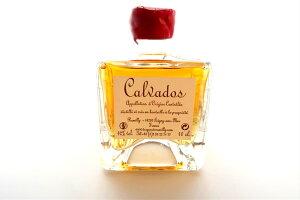 カルヴァドス VSOPミニボトル 42% 100ml (送料込) - Calvados VSOP Mini