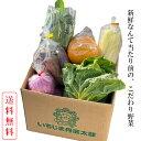 【送料無料】野菜セット 有機野菜 無農薬 減農薬 兵庫県 お