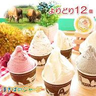【まきばのジャージーアイスクリーム】よりどり12個セットギフトセットアイスクリームアイスミルクフルーツチョコレートラムレーズン抹茶マカデミアごま詰め合わせお祝いギフトプレゼントお取り寄せおいしい美味しいお子様子供ご年配小分け
