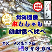 送料無料本ししゃも雄雌食べ比べセット北海道産珍味希少豪華ごちそうお正月※離島・一部の地域は追加料金がかかります。