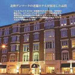 fossflakes(フォスフレイクス)スぺリオール35x50cmスモールサイズ北欧デンマーク製ピロー抜群の寝心地デンマーク老舗ホテル採用