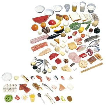 糖尿病指導キット(一単位80kcal) 規格:1〜100品セット(磁石付) 24-4508-03