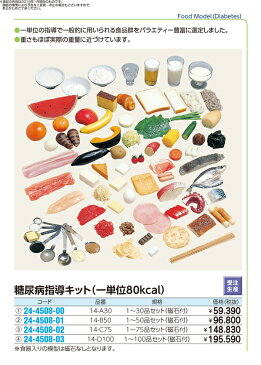 糖尿病指導キット(一単位80kcal) 規格:1〜75品セット(磁石付) 24-4508-02