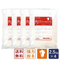 【期間限定】【送料無料】【4袋セット】南のめぐみ2.5kg×4パン用小麦粉強力粉国産九州産<ミナミノカオリ100>