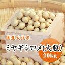 大豆 ミヤギシロメ 大粒 宮城県産 20kg【令和1年産】